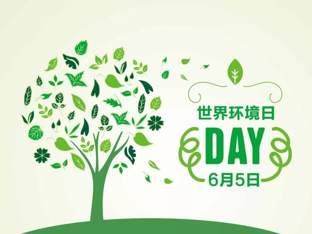 世界环境日!这些环保知识,你应该要知道!